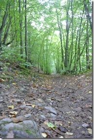 Traumpfad Eltzer Burgpanorama - Herbsticher Wanderweg
