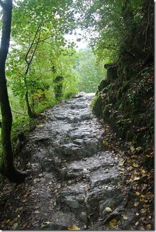 Traumpfad Eltzer Burgpanorama - Felsenpfad über Schiefer