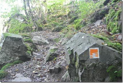 Traumpfad Eltzer Burgpanorama - Felspassagen