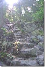 Teufelsschlucht Ernzen / Irrel - Felsen im Gegenlicht