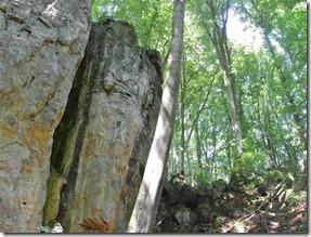 Teufelsschlucht Ernzen / Irrel - Fels & Wald
