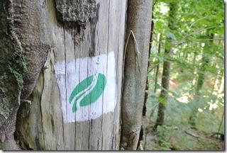 Teufelsschlucht Ernzen / Irrel - Logo des Naturpark delux