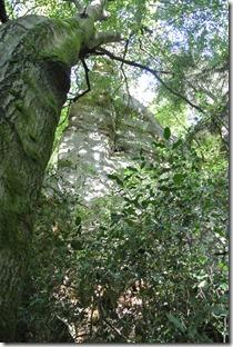 NaturWanderPark delux: Felsenweg 2 - Felsformation 1