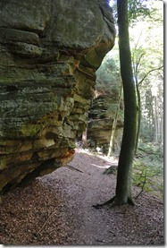 NaturWanderPark delux: Felsenweg 2 - Sandsteinformation 3