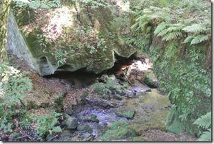 NaturWanderPark delux: Felsenweg 2 - Haupeschbaach 2