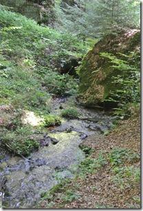 NaturWanderPark delux: Felsenweg 2 - Haupeschbaach 3
