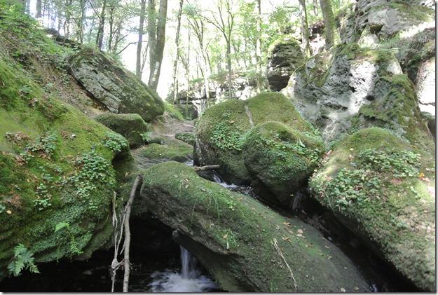 NaturWanderPark delux: Felsenweg 2 - Haupeschbaach & Fels