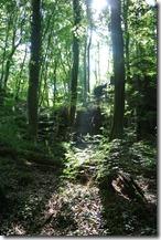 Rundwanderweg R8 - Lichtspiel in Felsenlandschaft