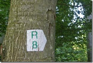 Rundwanderweg R8 - Logo des Wanderwegs