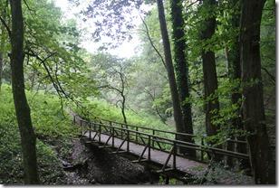 Traumpfad Höhlen-Schluchtensteig - Holzbrück im Pontertal