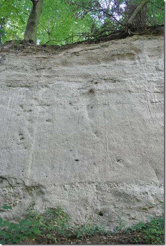 Traumpfad Höhlen-Schluchtensteig - Gesteinsformation
