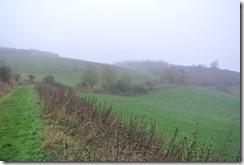 Traumpfad Heidehimmel - Weg zur Waberner Heide