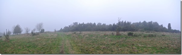 Traumpfad Heidehimmel - Panrama Waberner Heide