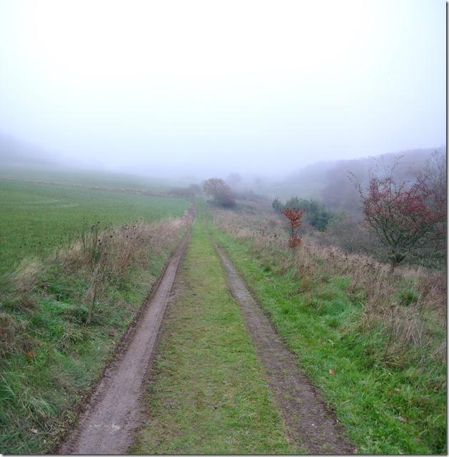 Traumpfad Heidehimmel - Weiter durch den Nebel