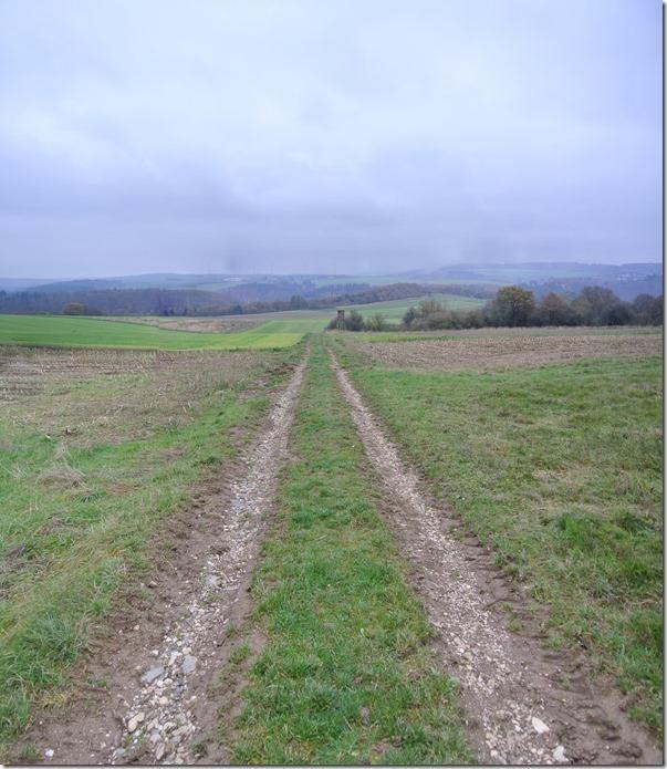 Traumschleife Rabenlay - Feldweg