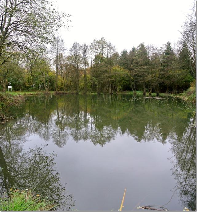 Traumschleife Rabenlay - Waldsee