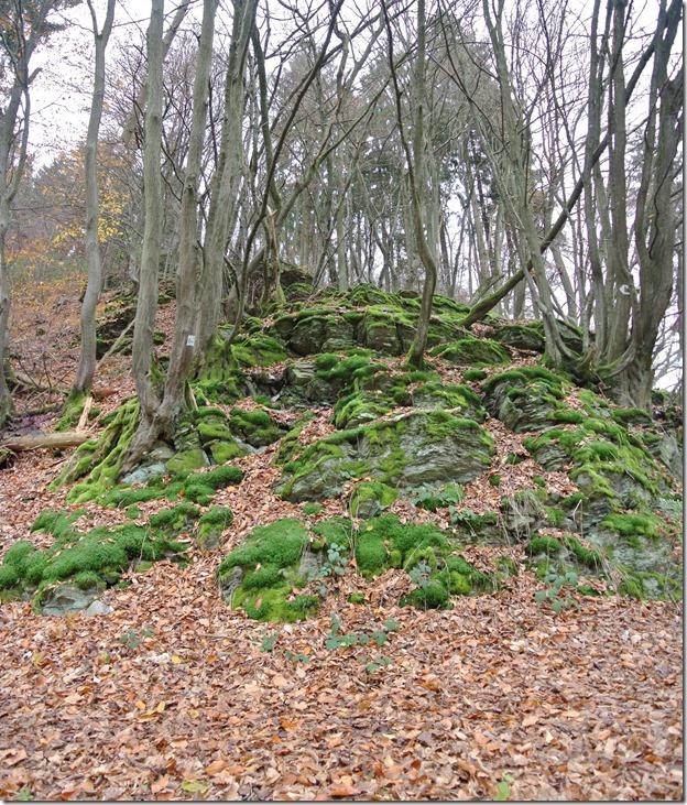 Wäller Tour Iserbachschleife - Fels und Wald