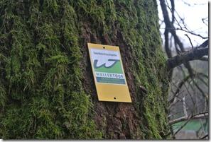 Wäller Tour Iserbachschleife - Markierung Abzweigung