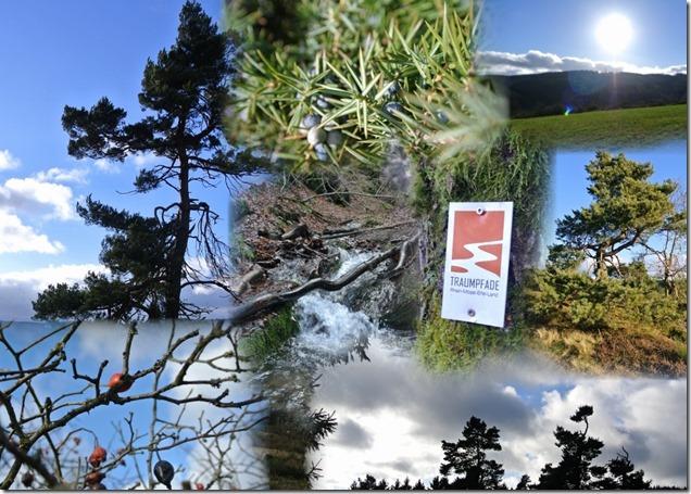 Traumpfad Bergheidenweg - Collage