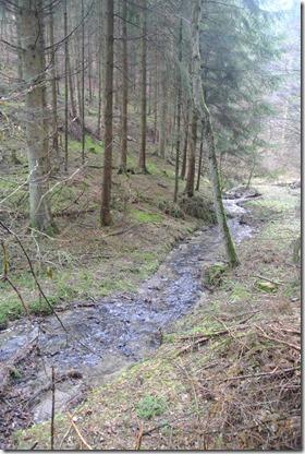 Wäller Tour Eisenbachtal - Bachlauf