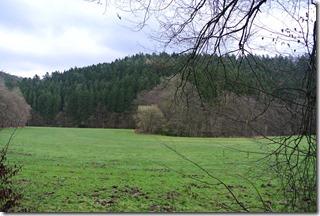 Wäller Tour Eisenbachtal - Blick ins Tal