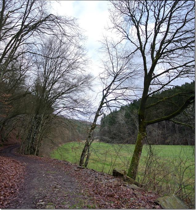 Wäller Tour Eisenbachtal - Großansicht Weg im Eisenbachtal