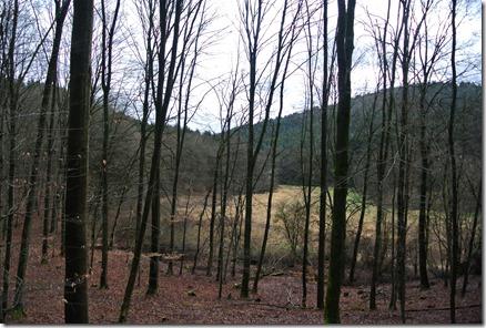 Wäller Tour Eisenbachtal - Blick ins Eisenbachtal