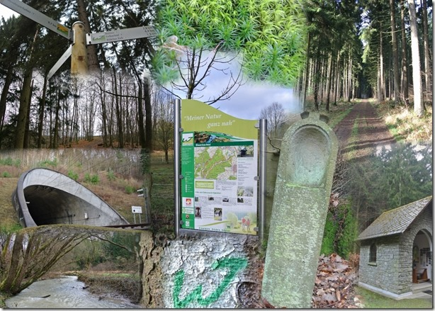 Wäller Tour Eisenbachtal - Collage
