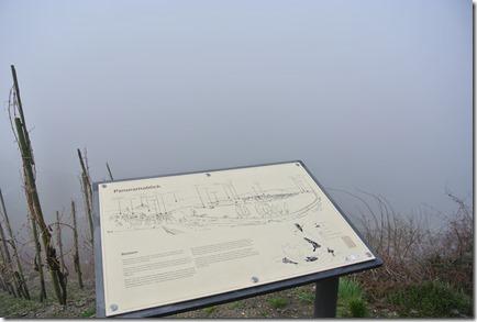 Moselsteig Etappe 18 - Panoramablick im Nebel