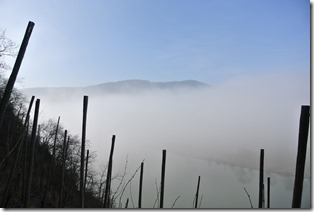 Moselsteig Etappe 18 - Nebel im Tal