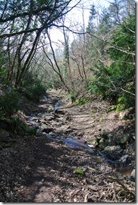 Moselsteig Etappe 18 - Blick zurück ins Tal