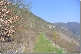Moselsteig Etappe 19.1 - Weg durch den Steilhang