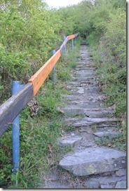 Moselsteig Etappe 19.2 - Aufstieg Pinnerberg
