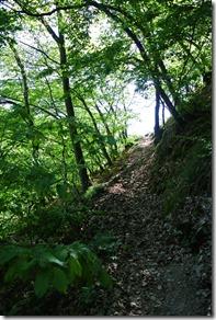 Moselsteig Etappe 19.2 - Aufstieg aus dem Dortebachtal