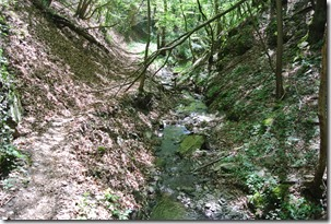 Moselsteig Etappe 19.2 - Bachlauf im Schilzergraben