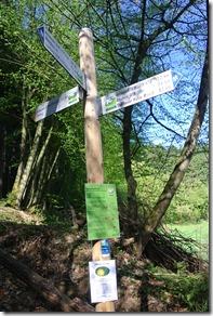 Wäller Tour Iserbachschleife - Zuwegung und Hauptweg treffen sich