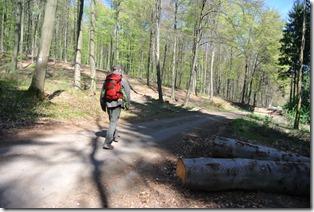 Wäller Tour Iserbachschleife - Wanderer unterwegs