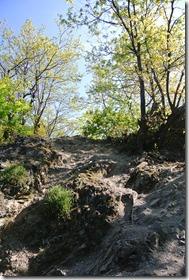 Moselsteig Etappe 23 - Steiniger Pfad