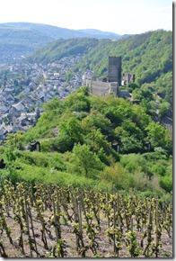 Moselsteig Etappe 23 - Die Niederburg von oben