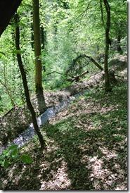 Moselsteig Etappe 23 - Hohensteinsbach