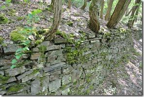 Moselsteig Etappe 23 - Trockenmauer