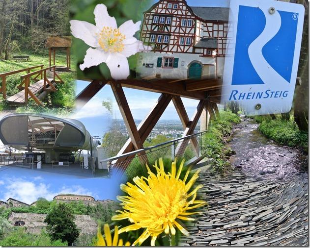 Rheinsteig Ehrenbreitstein - Montage