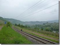 Moselsteig Etappe Reil - Zell (Mosel) - Entlang der Eisenbahn