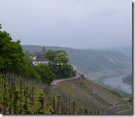 Moselsteig Etappe Reil - Zell (Mosel) - Marienburg