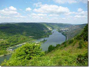 Moselsteig Traben-Trarbach - Reil - Blick moselabwärts