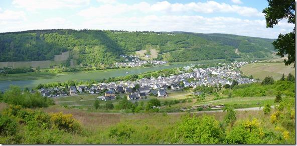Moselsteig Traben-Trarbach - Reil - Panorama Enkirch