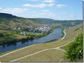 Moselsteig Traben-Trarbach - Reil - Mosel & Reil
