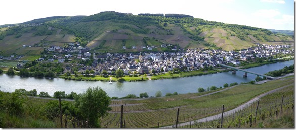Moselsteig Traben-Trarbach - Reil - Panorama von Reil
