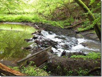 Traumschleife Oberes Baybachtal - wildes Wasser