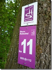 Traumschleife Oberes Baybachtal - Kilometer 11
